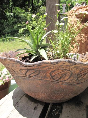 幾何紋植木鉢寄せ植え
